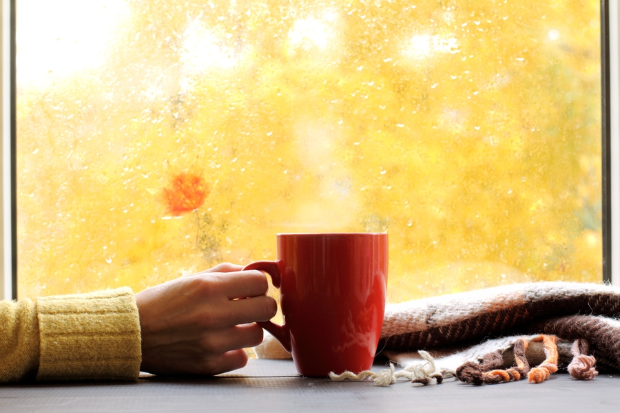 Woman drinking cup of coffee in front of fall window in her home enjoying her clean indoor air quality.
