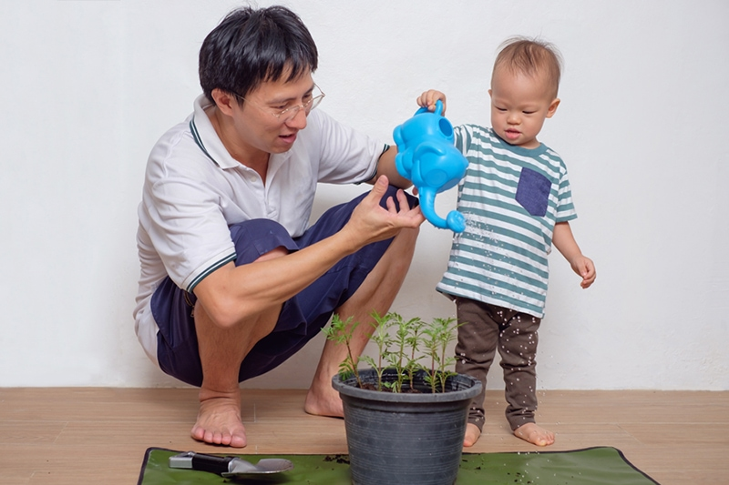Smiling Middle age asian father teaching his cute little asian 18 months / 1 year old toddler baby boy child about plants at home / apartment in the urban city, they watering plant from watering can, HVAC Ways to Go Green in Your Home