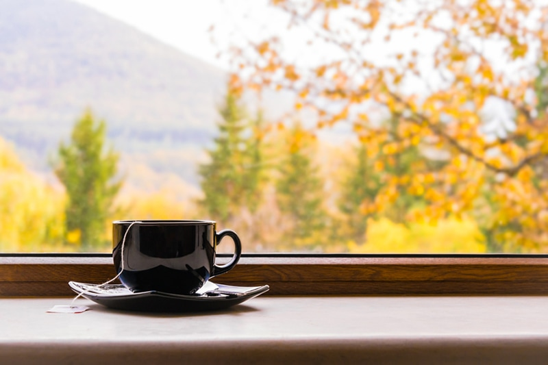 Cup of tea in front of window with autumn view, Why Do I Need a Humidifier in the Fall?
